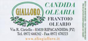7 GIALLORO
